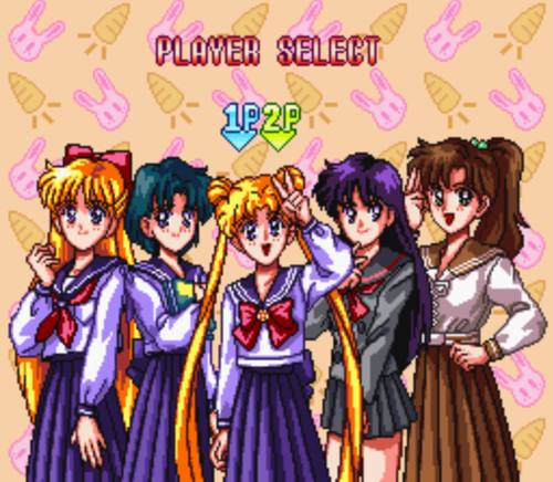 The cast of Sailor Moon R
